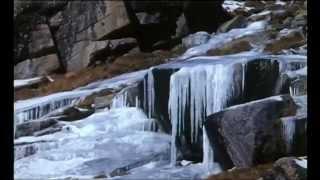 Documentaire Les seigneurs de l'hiver – Chamois & bouquetins dans les Alpes
