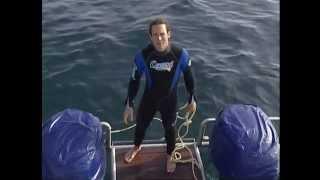 Documentaire Ushaka, territoire du Grand Requin Blanc