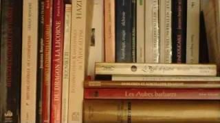 Documentaire Le peintre et l'alchimiste
