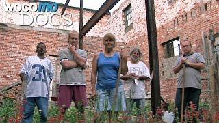 Documentaire Détroit, ville sauvage, renaissance d'une ville abandonnée