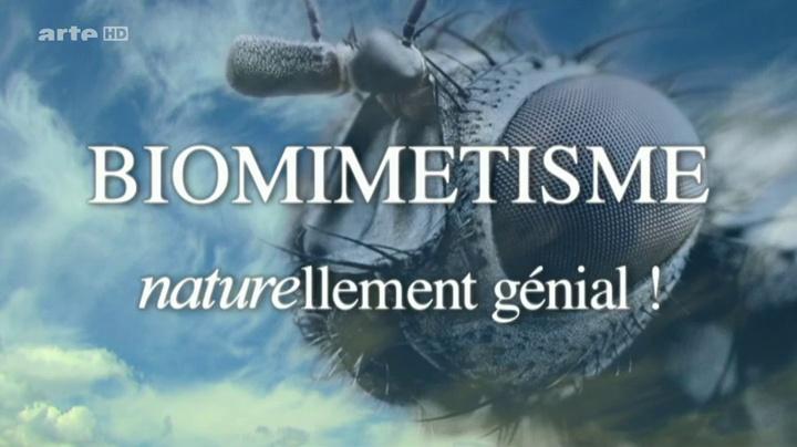 Documentaire Biomimetisme naturellement génial, les materiaux du futur
