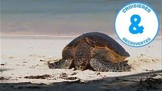 Documentaire Les Seychelles