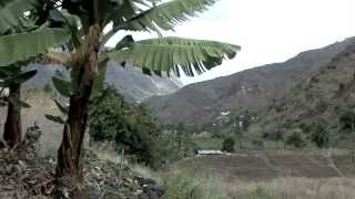 Documentaire Les Canaries