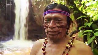 Documentaire Chamanisme : les médecins volants du Rio Pastaza