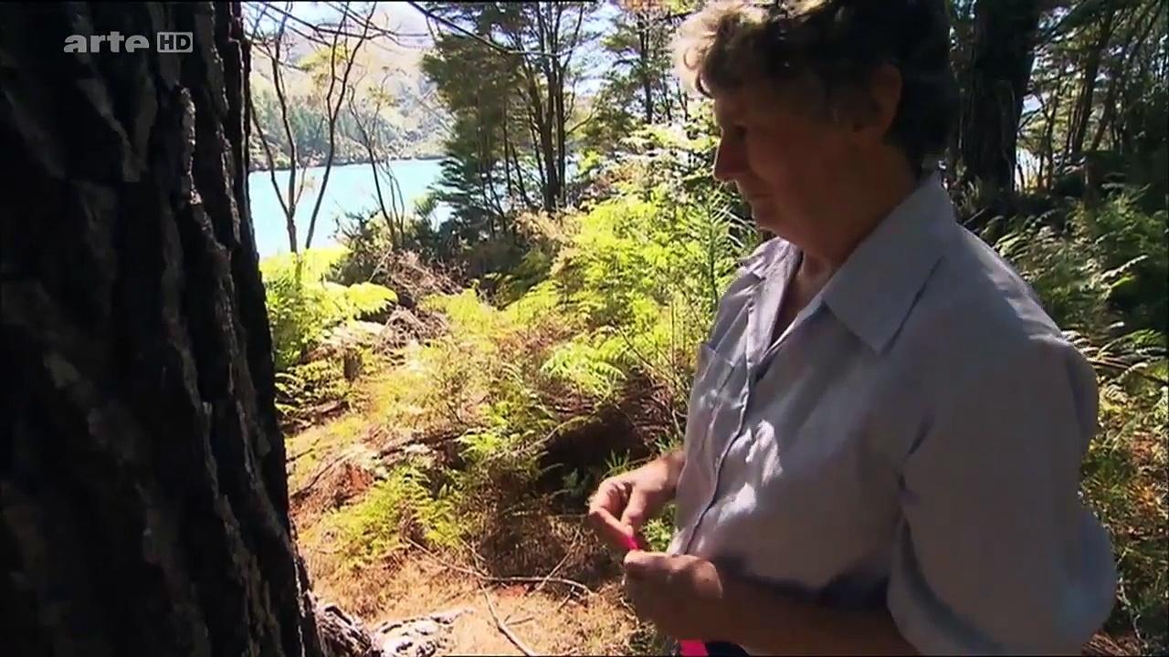 Documentaire Contes des mers – Un été en Nouvelle-Zélande : les Marlborough Sounds