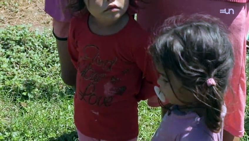Documentaire Des OGM dans nos assiettes, de gré ou de force