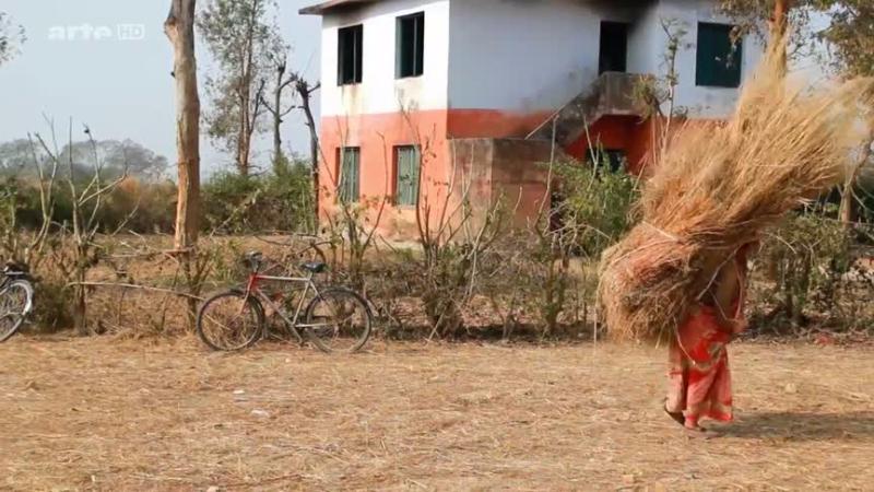 Documentaire Kamlahari – Les enfants brades du Népal
