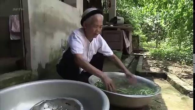 Documentaire Vietnam, du cobra au menu