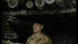 Documentaire Nazis vs US Army, sur les océans – 4 – The Navy