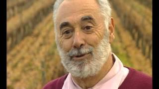 Documentaire La route des vins – Languedoc