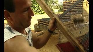 Documentaire La route des vins – Sud Ouest