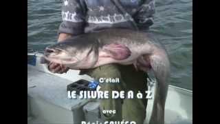 Documentaire Pêche au silure de A à Z