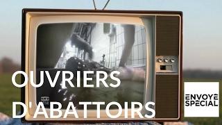 Documentaire Ouvriers d'abattoirs : des bourreaux ou des hommes ?