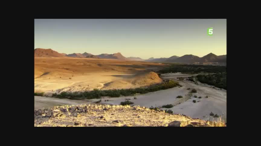 Documentaire Le désert de Judée