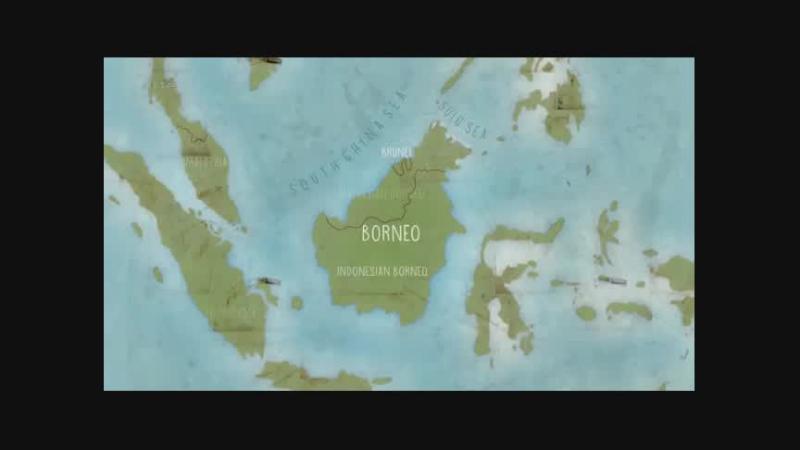Documentaire Kinabatangan, le fleuve prodigue de Bornéo –  L'offrande de la terre sous le vent