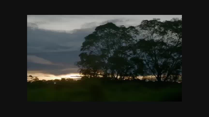 Documentaire La traversée de l'Amérique du Sud en autocar –  La route de l'or