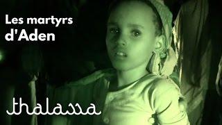 Documentaire Les martyrs du golfe d'Aden