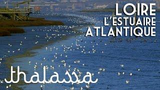 Documentaire La Loire, l'estuaire atlantique