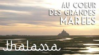 Documentaire Au cœur des grandes marées