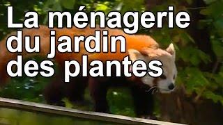 Documentaire La ménagerie du jardin des plantes