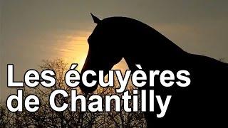 Documentaire Les écuyères de Chantilly