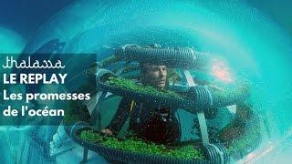 Documentaire Les promesses de l'océan