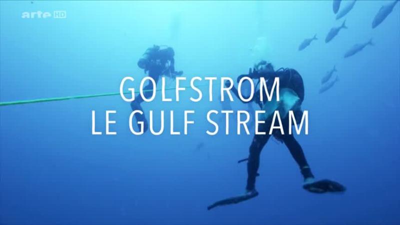 Documentaire Le Gulf Stream – De Cuba à Terre-Neuve