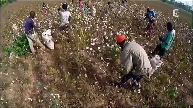 Documentaire Les routes de l'impossible – Benin, coton à tout prix