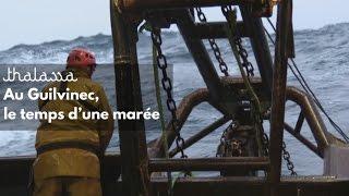 Documentaire Au Guilvinec, le temps d'une marée