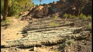 Documentaire C'est pas sorcier – Oasis, une escale dans le désert
