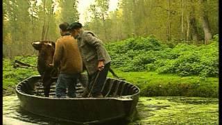 Documentaire C'est pas sorcier – Marais poitevin