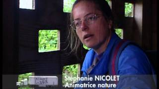 Documentaire C'est pas sorcier – Drôle d'oiseau, le parc ornithologique de Marquenterre