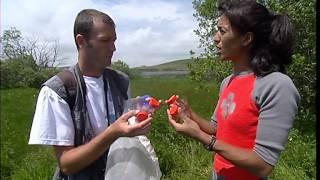 Documentaire C'est pas sorcier – Trésor des tourbières