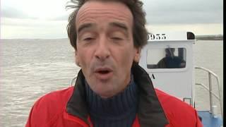 Documentaire C'est pas Sorcier – Huîtres , un coquillage bien élevé