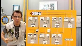 Documentaire C'est pas sorcier – Nanomonde se secoue les puces