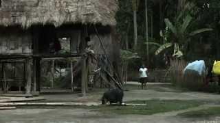 Documentaire Le Brahmapoutre