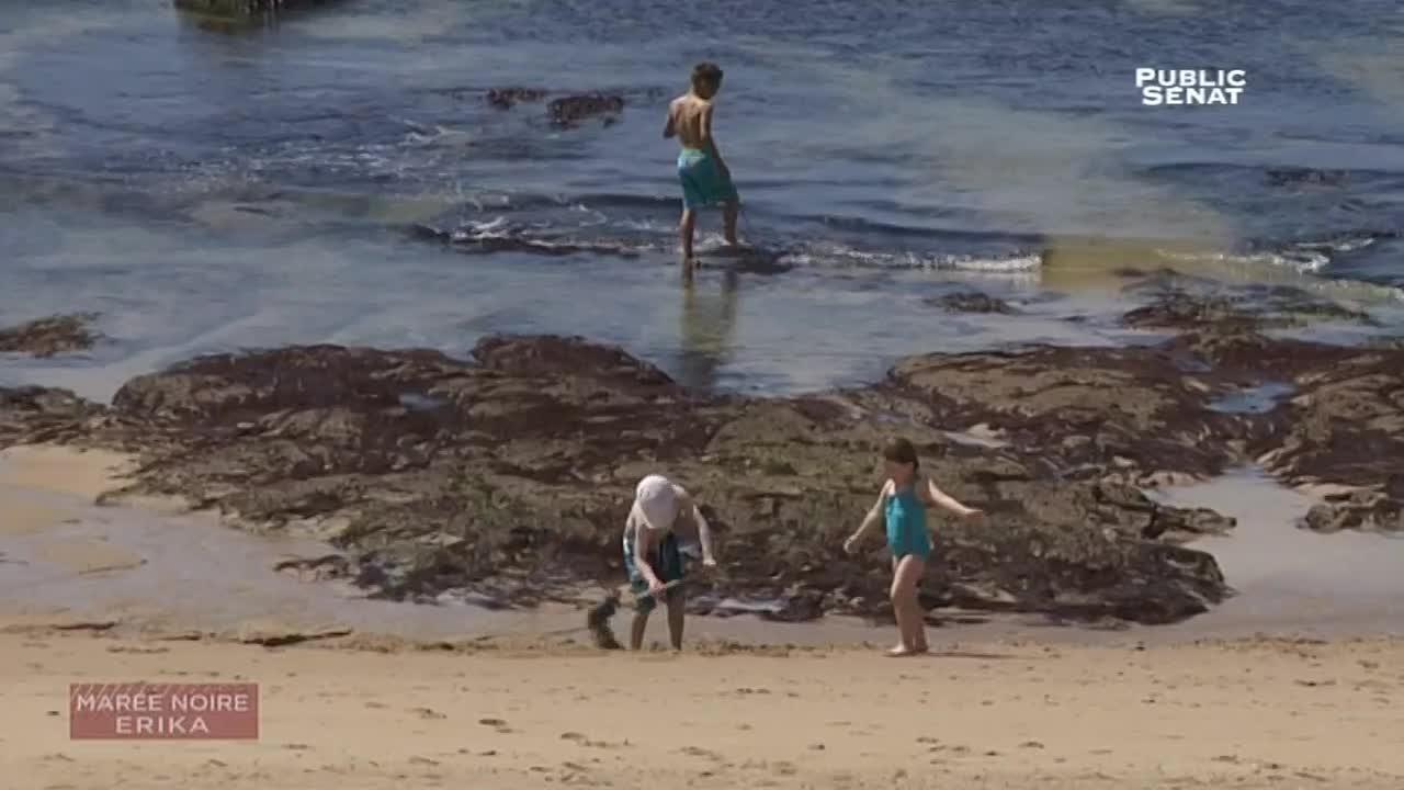 Documentaire Le naufrage de l'Erika – La marée était en noire