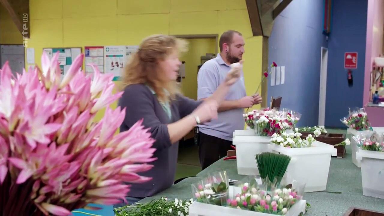 Documentaire Les îles de sa Majesté – Les îles Scilly