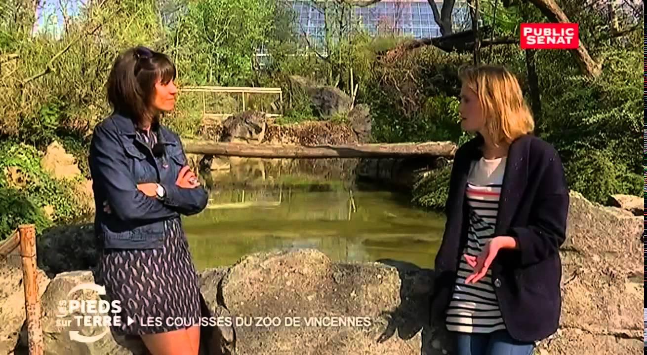 Documentaire Zoo de Vincennes – Les pieds sur terre