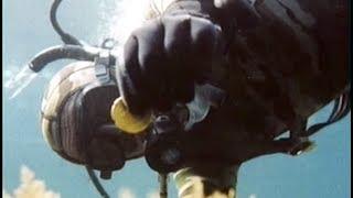 Documentaire Corse, main basse sur le trésor de 4000 pièces d'or !