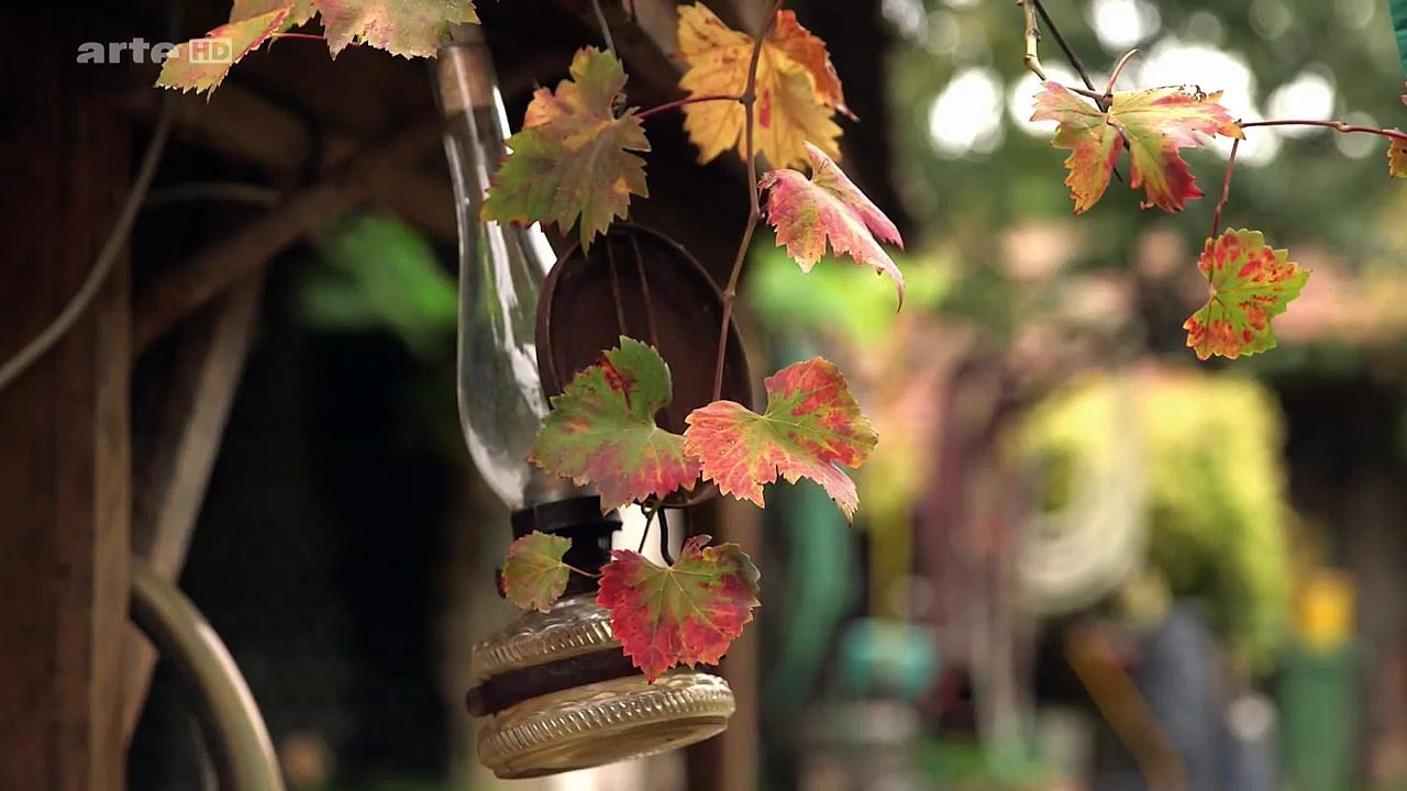 Documentaire Cuisine Royale – Dans le vignoble de Tokaj
