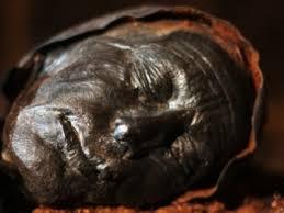 Documentaire Enquête sur la momie des tourbières
