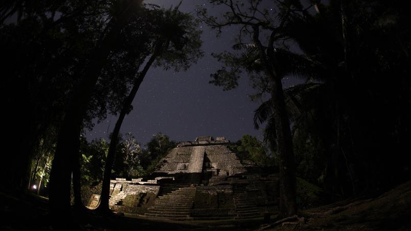 Documentaire Le monde secret de la Nuit – Dans la jungle du Costa Rica