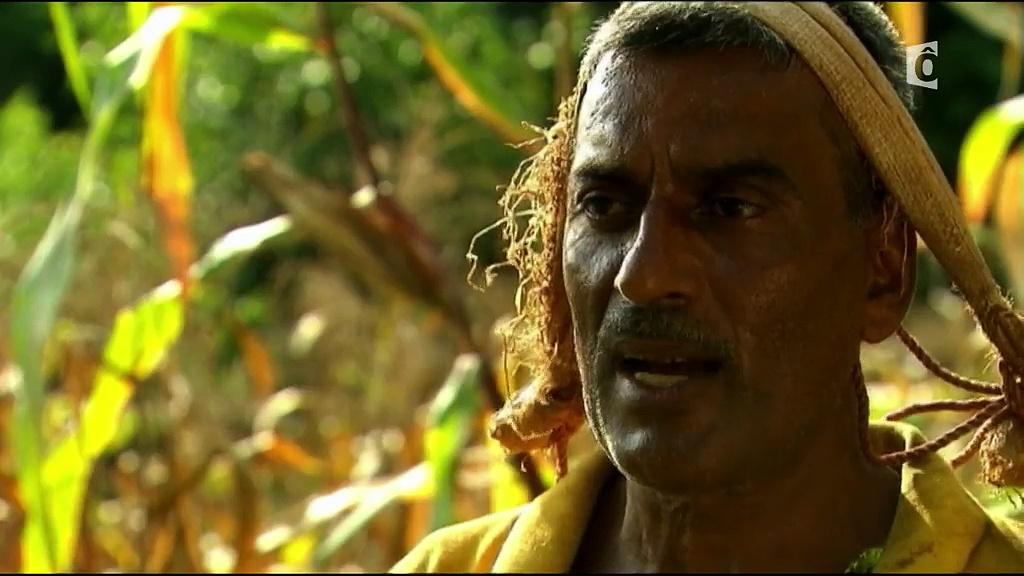 Documentaire Chemins d'école, chemins de tous les dangers – Népal