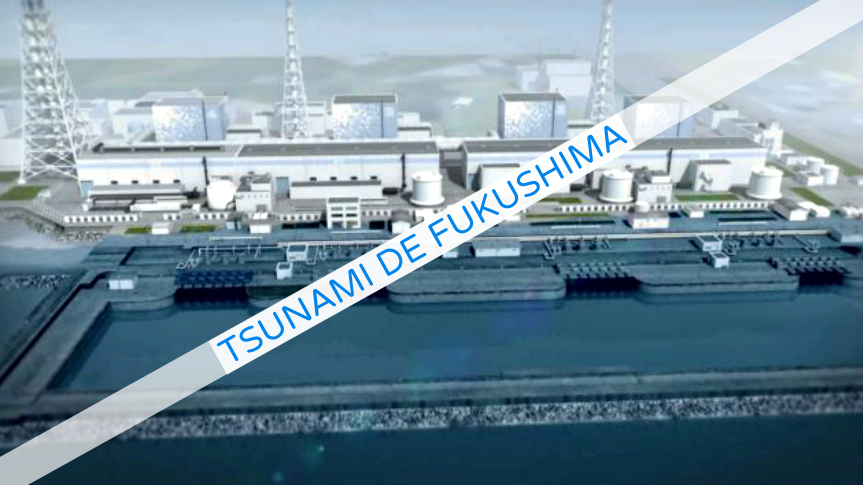 Documentaire Tsunami de Fukushima