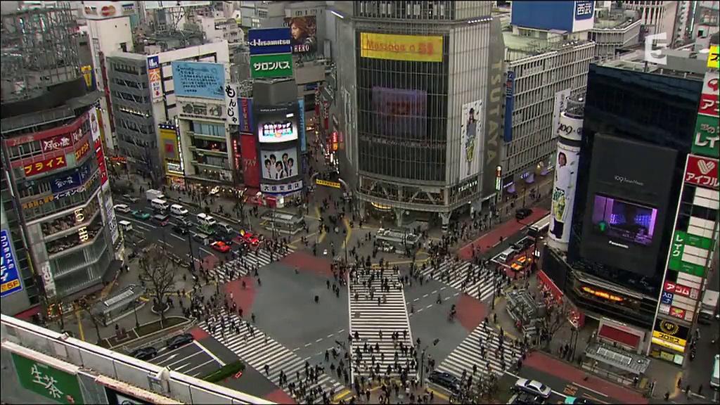 Documentaire Japon sauvage