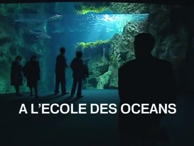 Documentaire A l'école des océans
