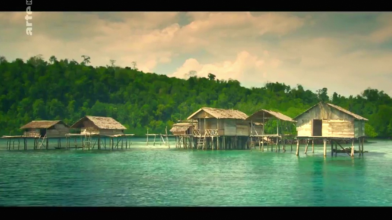 Documentaire Jago, une vie aquatique