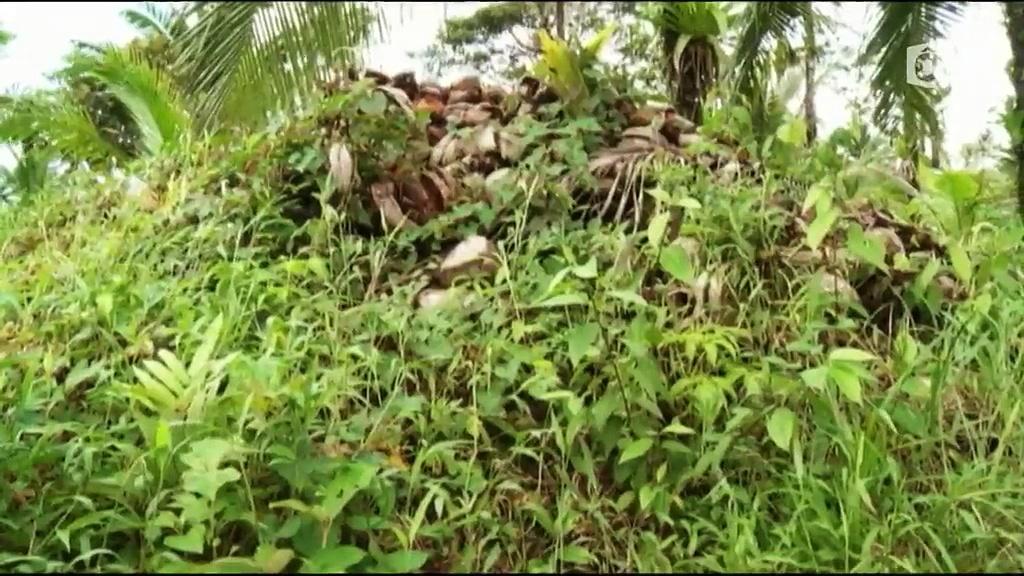 Documentaire Chemins d'école, chemins de tous les dangers – Le Nicaragua