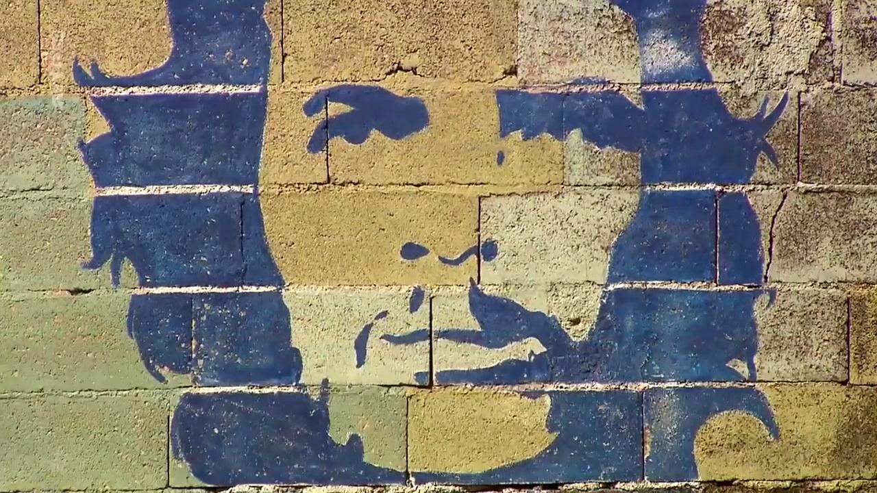 Documentaire Le Che en toute intimité